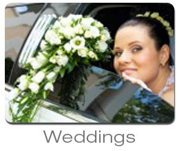 Wedding Limousine in Los Angeles